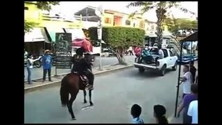 Horse Does Backflip!!!
