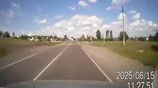 Rosja, krowa na drodze