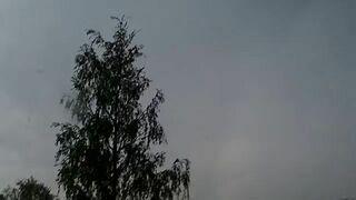 Piorun uderza w drzewo - Молния ударила в дерево