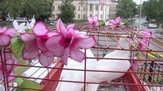 Najlepsze wideo ze ślubu w Rosji