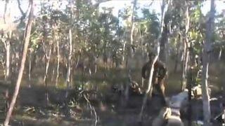 Powalanie drzew w Armii