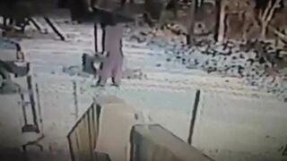 Kot atakuje człowieka