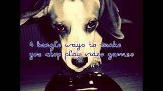 4 Sposoby psa na to, abyś przestał grać w gry wideo