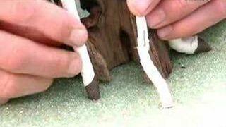 Plastikowe bonsai - Jak to jest zrobione?