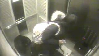Kobieta z psami w windzie i zatrzaśnięta smycz