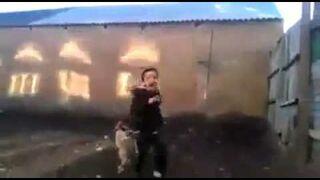 Dzieciak zaatakowany przez koguta!