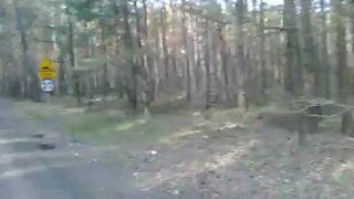 Kawałek asfaltu w lesie, próg zwalniający i ograniczeniem do 20km