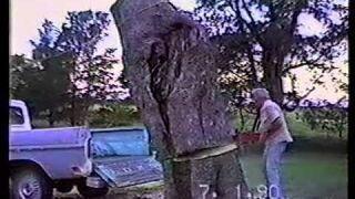 Ścinanie drzewa prosto na pikapa, nie przewidział jednego
