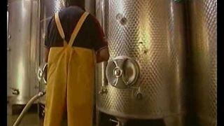 Wino - Jak to jest zrobione?