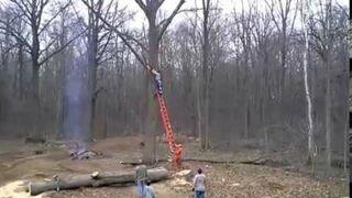 Obcinanie gałęzi drzewa