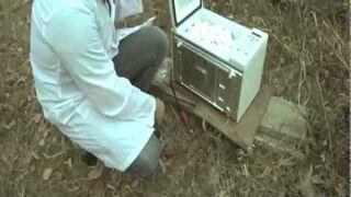 Wybuch 173 jajek w mikrofalówce!