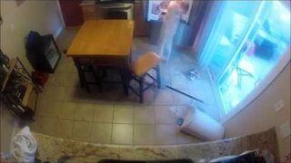 Bardzo głodny labrador w ukrytej kamerze
