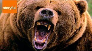 Atakował go niedźwiedź. Przestraszył napastnika!